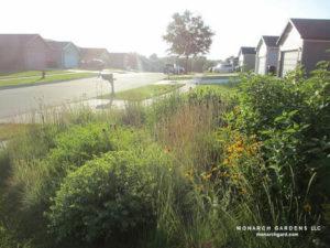 A small pollinator garden