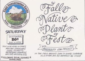 Fall Native Plant Fest
