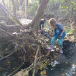 Volunteer cleaning up trash from the banks of the Herring Run stream in Towson.