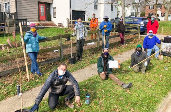 Tree planting in Stoneleigh