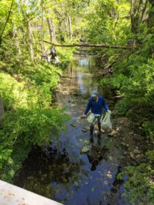 Volunteers cleaning a stream